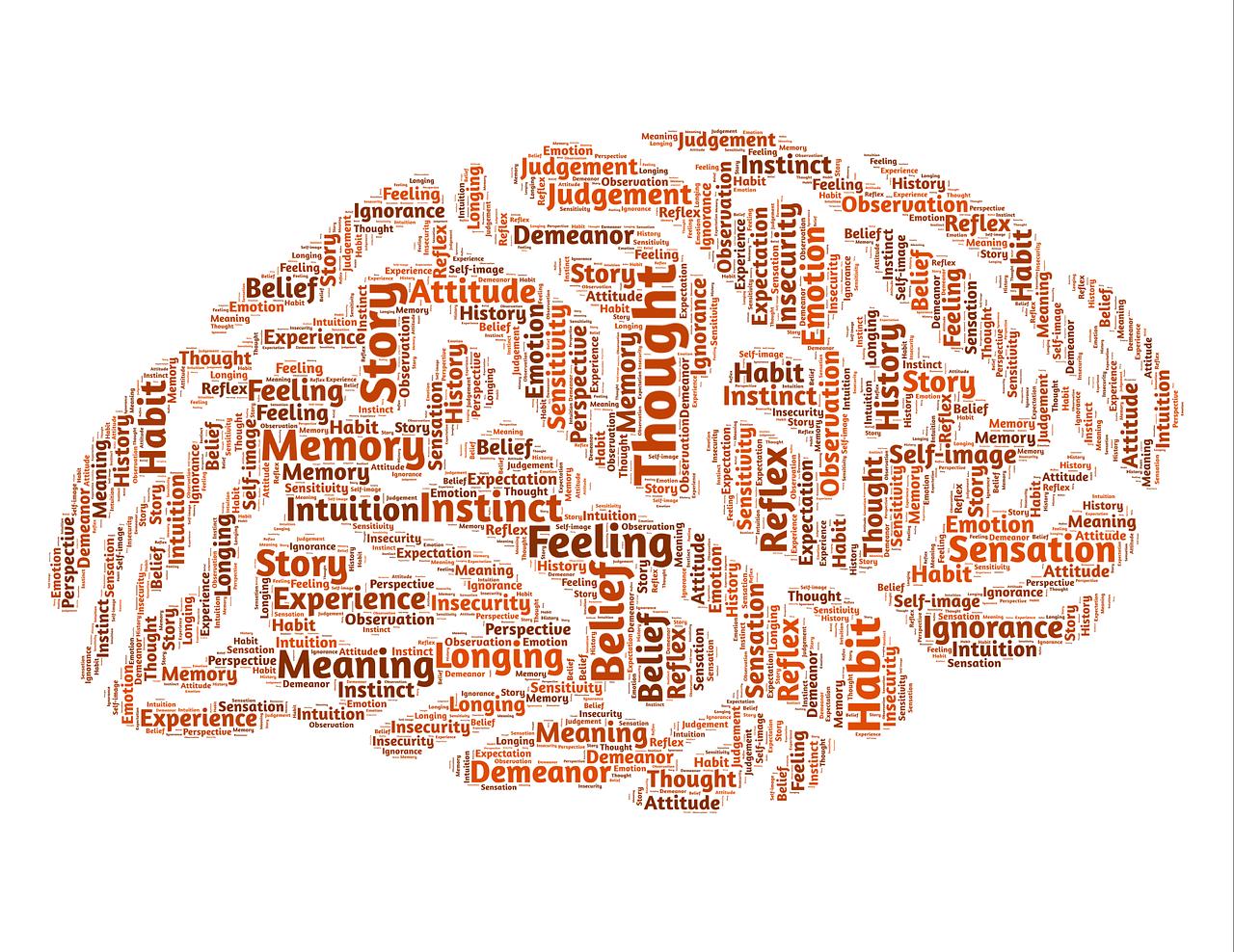 Gehirntraining für Senioren - Was kann gemacht werden
