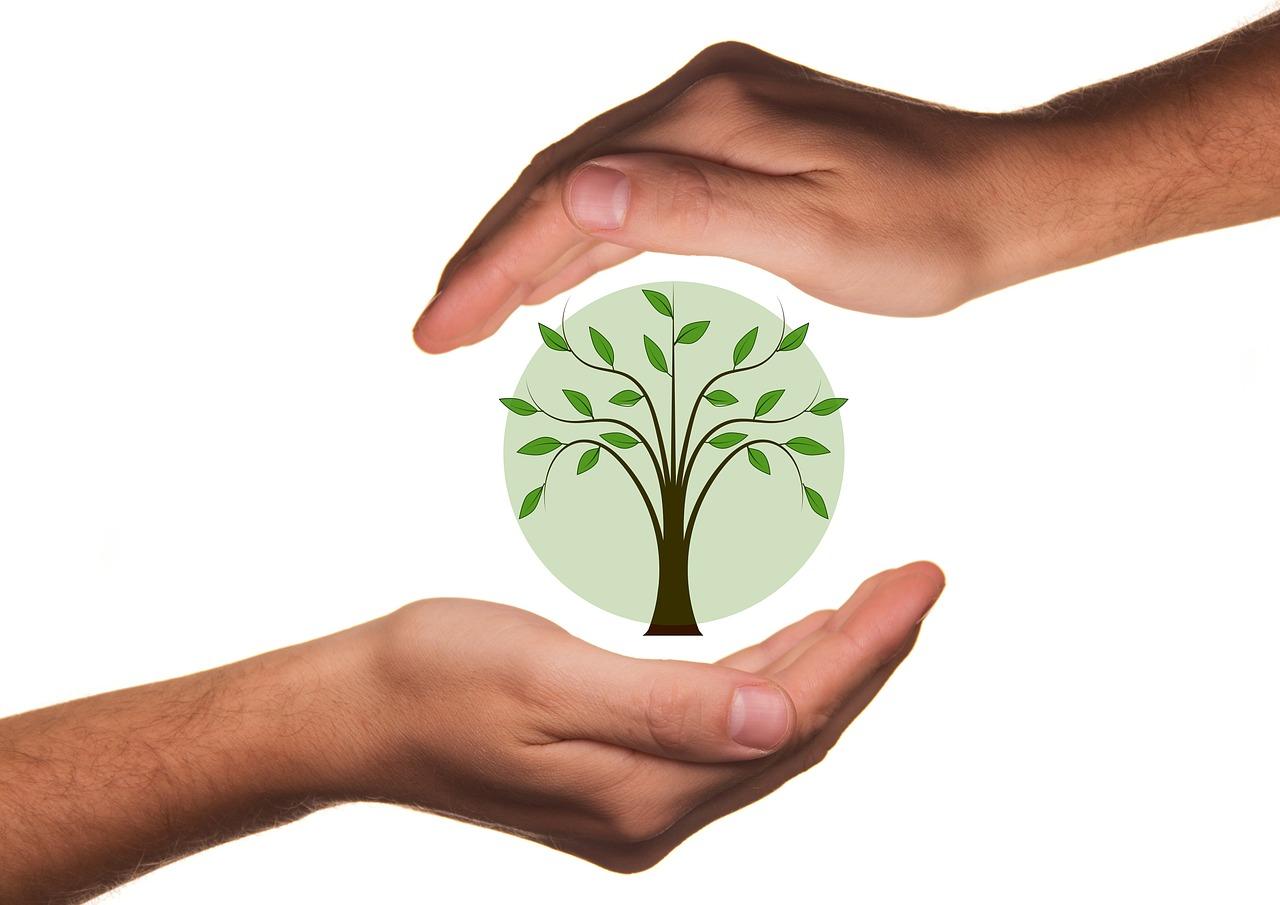 Ökomarketing - Strategien für Senioren mit Onlieshops