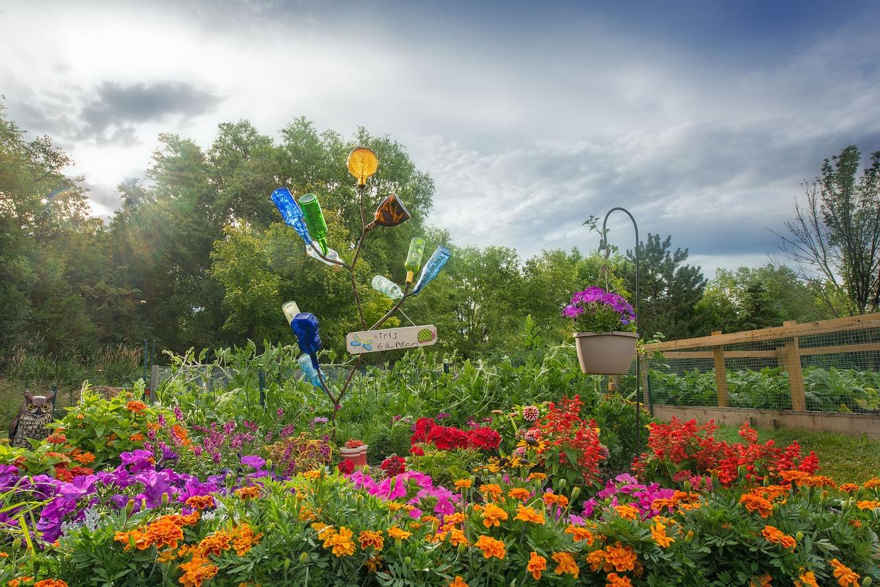 Der Garten für Senioren bietet neben Blumen auch Obst und Gemüse