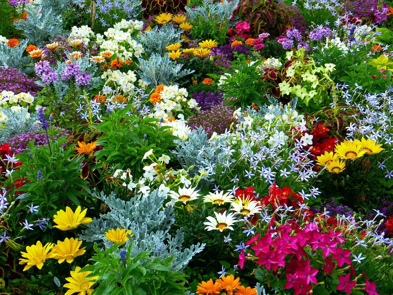 Der Blumengarten muss schon im Frühjahr geplant werden