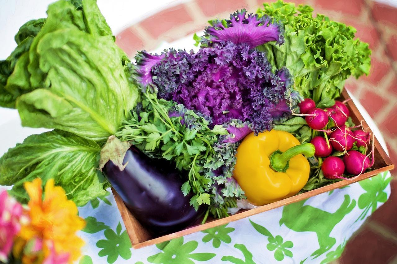 Biogärten sind eine gute Methode um die Selbstversorgung zu gewährleisten